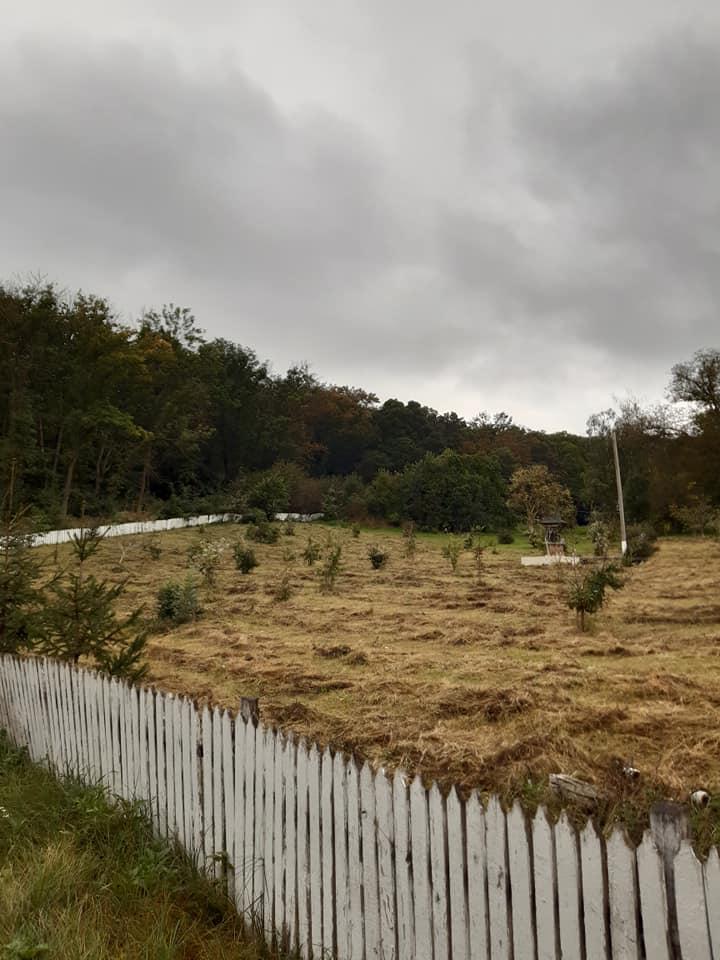 """Discuții cu reprezentanții Agenției """"Moldsilva"""", în contextul identificării terenului pentru construcția unei tabere de odihnă pentru copii în extravilanul satului Păruceni, raionul Nisporeni."""